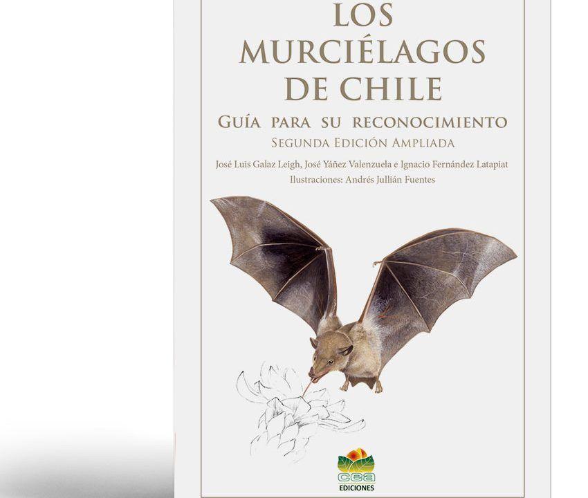 portadaibro de Murcielagos de Chile